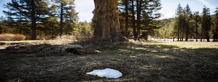 Todo lo que hay que saber rumbo a la COP21