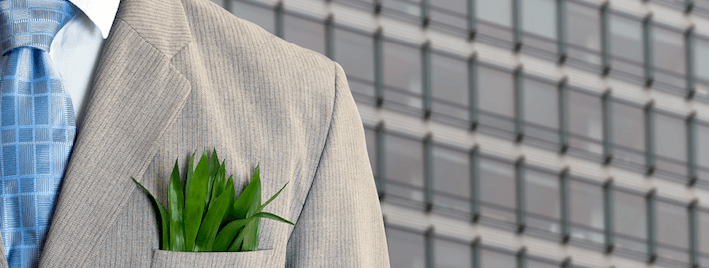 Liderando el cambio hacia la economía 'verde'